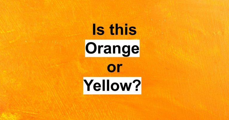 What Type Of Intelligence Do You Have According To This Beautiful Color Quiz?