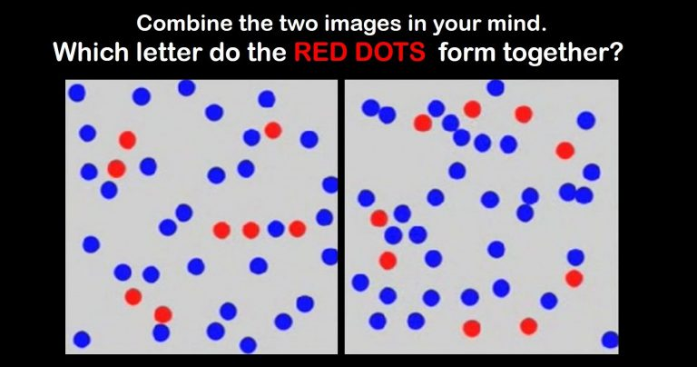 Only 1% Of The Population Can Pass This Photographic Memory Test