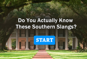 Do You Actually Know These Southern Slangs?
